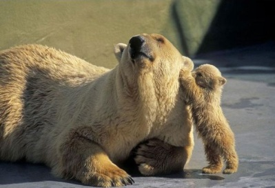 Mommy, I've got to tell you something!