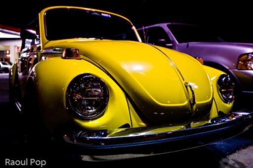 Late night Bug