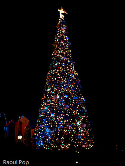 Christmas tree at Walt Disney World