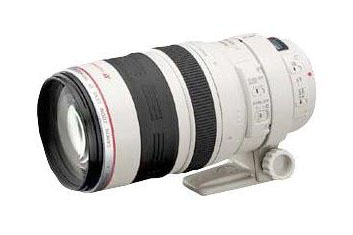 Canon EF 100-400mm f/4.5-5.6L IS Zoom Lens