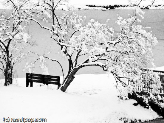 Snowman rests on bench