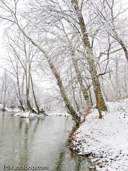 Potomac shoreline during snowstorm
