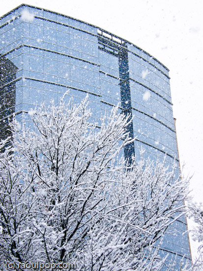 Glass building in snowstorm