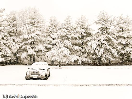 MINI during snowfall