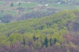 Shenandoah Valley Panoramic I (1:1 detail)