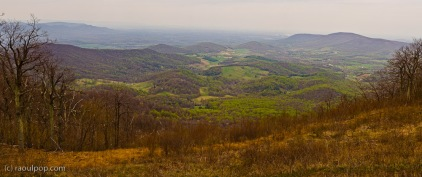 Shenandoah Valley Panoramic III