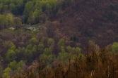 Shenandoah Valley Panoramic IV (1:1 detail)