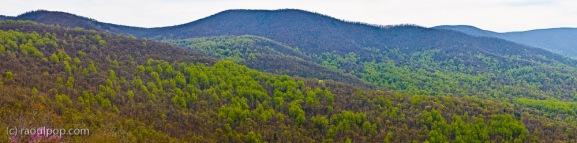 Shenandoah Valley Panoramic V-I