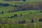 Shenandoah Valley Panoramic VI (1:1 detail)