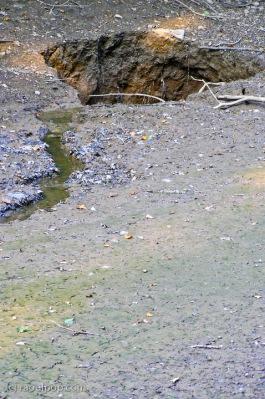 Sinkhole on C&O Canal