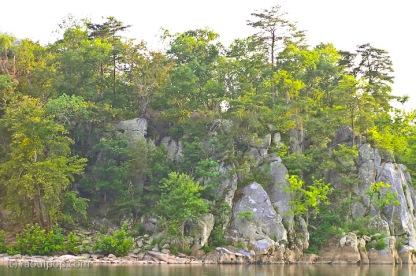 Shore of Potomac River