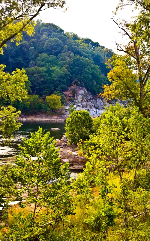 The Potomac River shore in late afternoon. Taken near Great Falls, MD.