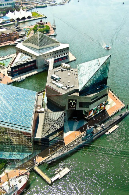 Aerial view of the Baltimore Aquarium