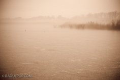 Fog over icy pond