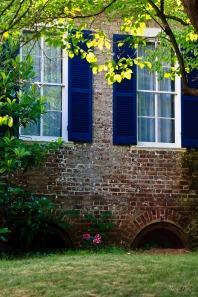 Blue window shades
