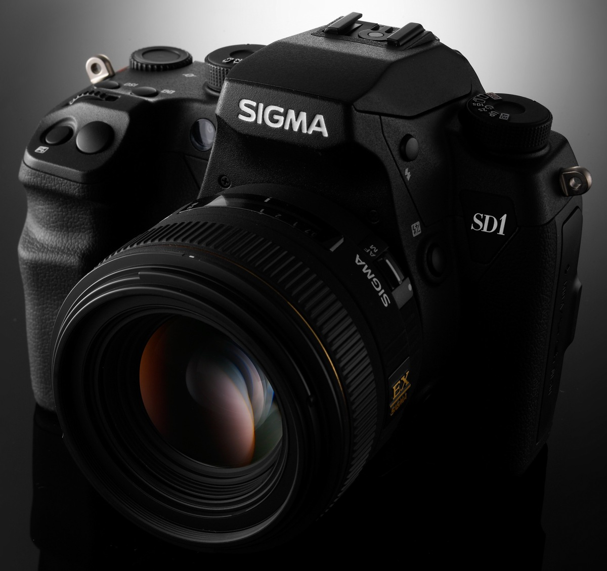 My thoughts on SigmaDSLRs