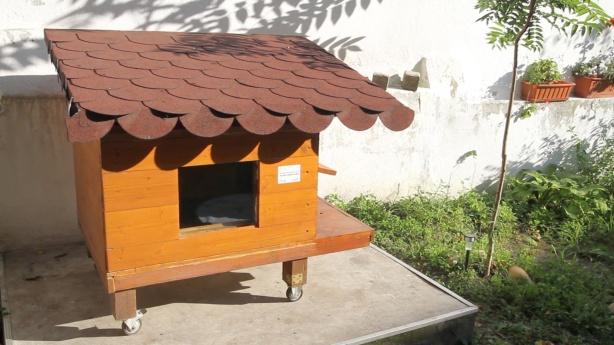 Shelf Design Hall Building PDF Plans reclaimed wood bed frame plans
