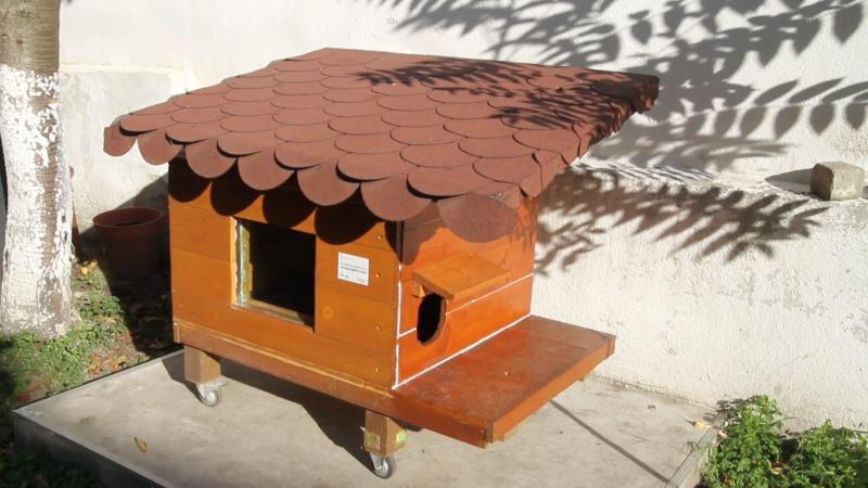 cat house interior design