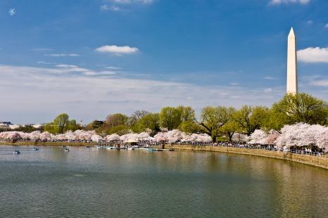 Fertile waterfront