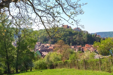On the outskirts of Sighisoara.