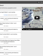 how can a normal youtube video garner so many copyright claims