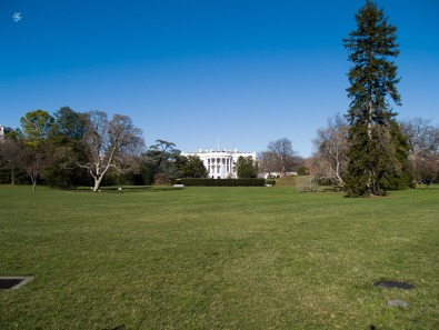 The lawn of the White House