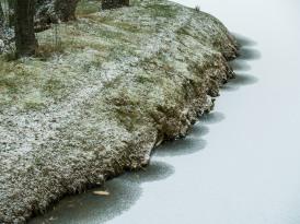 Frozen lake shore, Grosvenor Park.