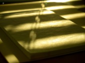 Soft golden light falls on a sheet of paper.