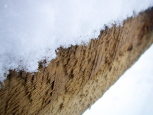 Snow on the fence