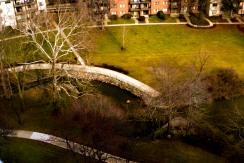 Spring in Grosvenor Park