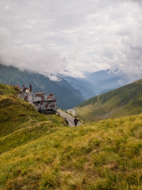 Ligia climbs toward the peak
