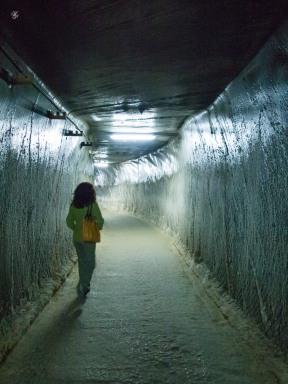 Solid salt tunnel