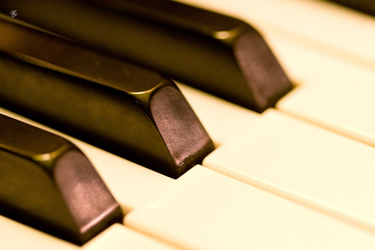 Keys on a piano, macro.