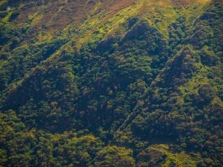 Green slope