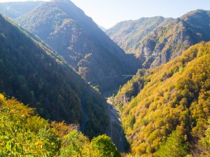 The view from Poenari Castle