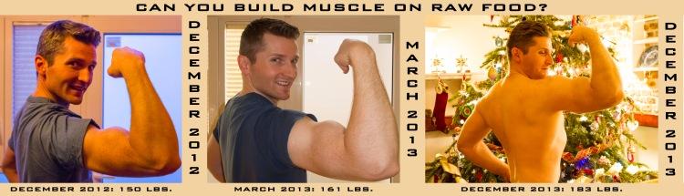 Bodybuilding Progress Triptych 2012-2013