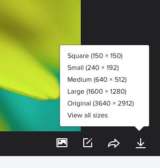 Flickr download options