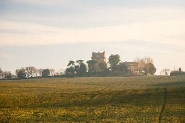 On the road between Rimini and Ancona, Italy