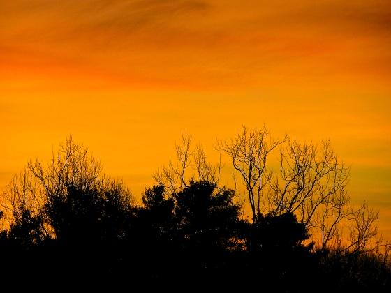 Morning sky at sunrise.
