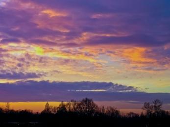 Dawn sky, Grosvenor Park.