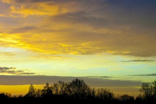 Dawn, Grosvenor Park.