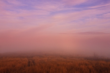 A hillside on the outskirts of Tulcea, Romania, blanketed in soft fog.