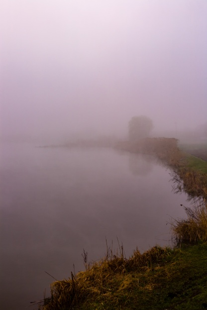 Morning fog over lake
