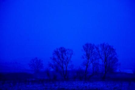 Early dawn
