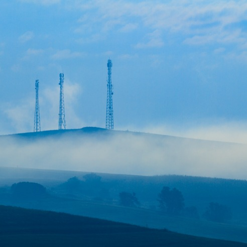 Antennae and trees, morning fog.
