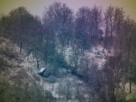 First snowfall of the 2010-11 winter, Medias, Romania.