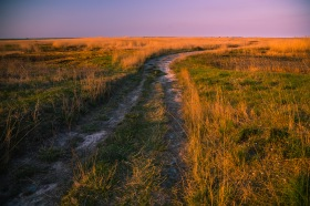 Evening on a dirt road