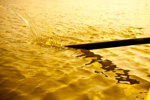 An oar strikes the water, making a splash. This is a very short exposure, which freezes the splash mid-air.