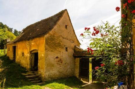 Fortified church, Copsa Mare, Transilvania, Romania
