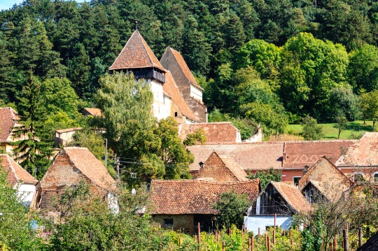 Village houses and fortified church in the background, Copsa Mare, Transilvania, Romania